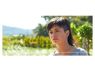 """El 6 de mayo se estrena """"El olivo"""", la nueva película de Iciar Bolláin"""