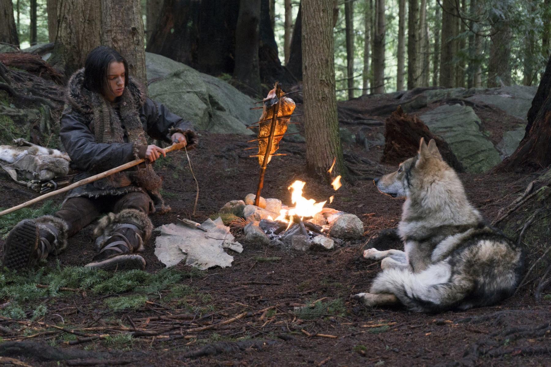 wolf bondage primer Kodi